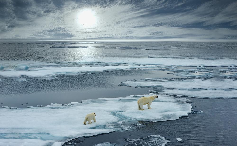 Finanssiala on sitoutunut Pariisin ilmastosopimuksen tavoitteeseen rajoittaa lämpötilan nousu puoleentoista asteeseen.