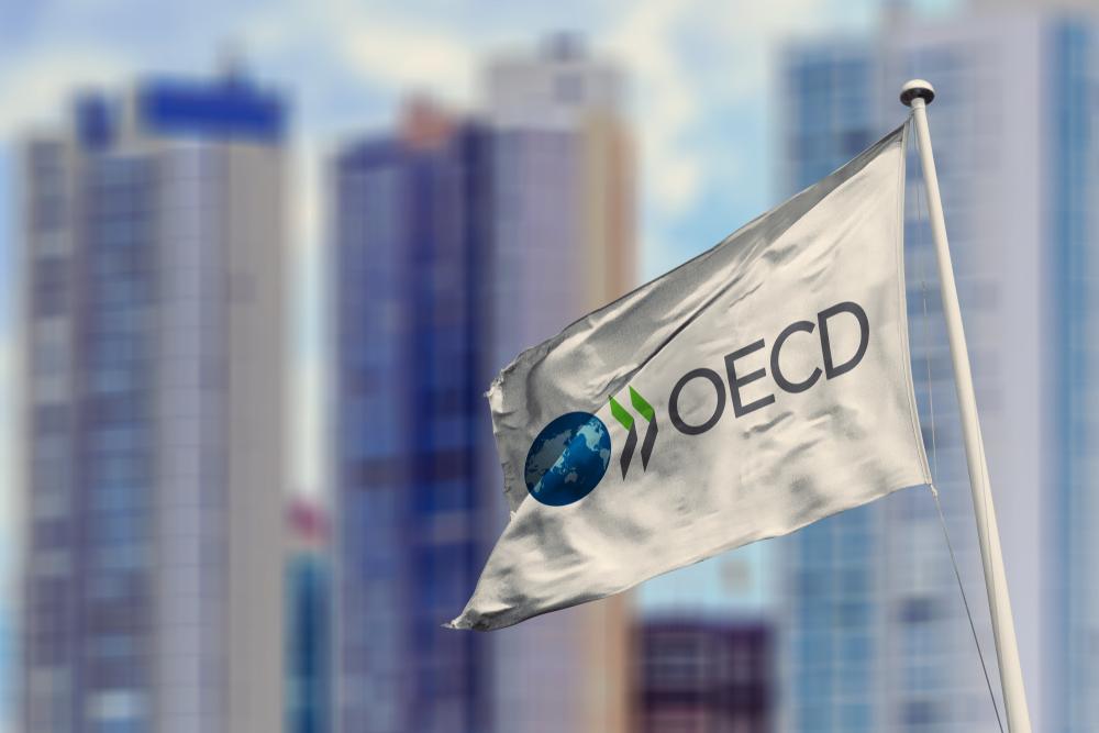 OECD:ssa on keskitytty talousosaamisasioihin jo useita vuosia. Kuva: Shutterstock.com