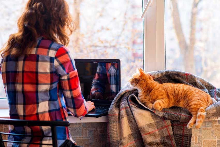Toimistotyöntekijöille sattuu vapaa-ajalla huomattavasti enemmän vahinkoja kuin työajalla. Kuva: Shutterstock.com