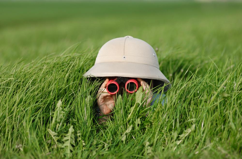 Kesätyöt kiikarissa?Kuva: Shutterstock.com